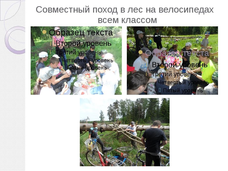 Совместный поход в лес на велосипедах   всем классом
