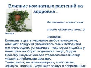Несомненно комнатные растения играют огромную роль в жизни человека. Комнатн
