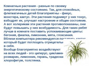 Комнатные растения - разные по своему энергетическому состоянию. Так, для спо