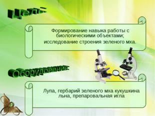 Лупа, гербарий зеленого мха кукушкина льна, препаровальная игла Формирование
