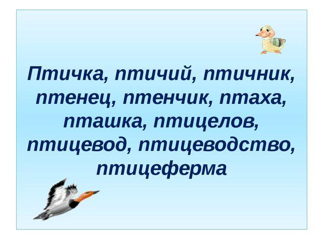 Птичка, птичий, птичник, птенец, птенчик, птаха, пташка, птицелов, птицевод,...
