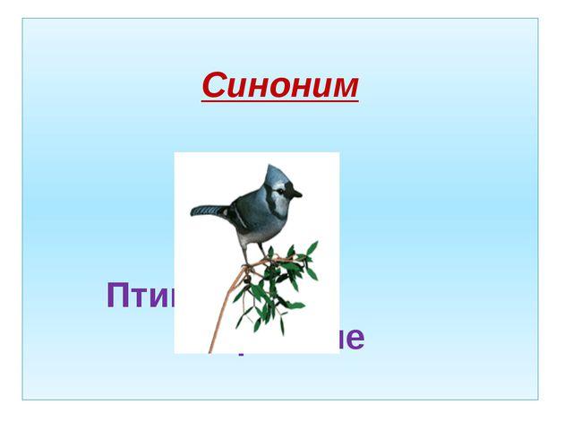 Синоним Птицы пернатые