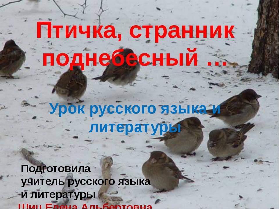 Птичка, странник поднебесный Птичка, странник поднебесный … Урок русского язы...