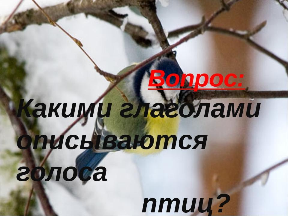 Вопрос: Какими глаголами описываются голоса птиц? Вопрос: Какими глаголами оп...