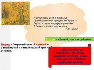Домашнее задание Написать черновик сочинения по картине И.С. Остроухова «Золо