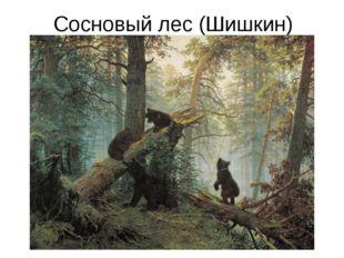 Сосновый лес (Шишкин)