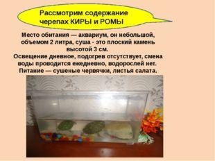 Место обитания — аквариум, он небольшой, объемом 2 литра, суша - это плоский