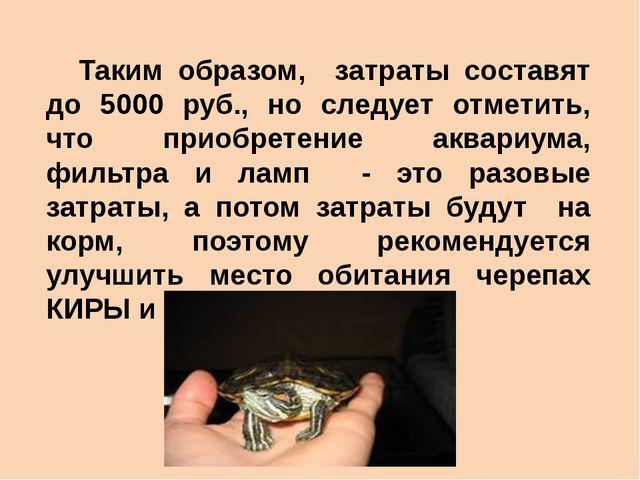 Таким образом, затраты составят до 5000 руб., но следует отметить, что приоб...