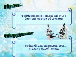 Формирование навыка работы с биологическими объектами Гербарий мха сфагнума,