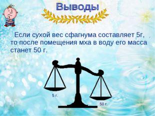 Если сухой вес сфагнума составляет 5г, то после помещения мха в воду его мас