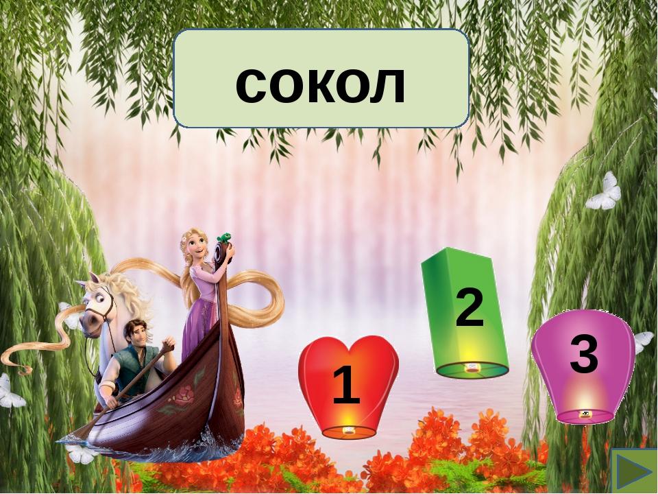сокол 2 1 3