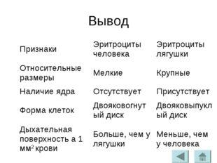 Вывод ПризнакиЭритроциты человекаЭритроциты лягушки Относительные размерыМ