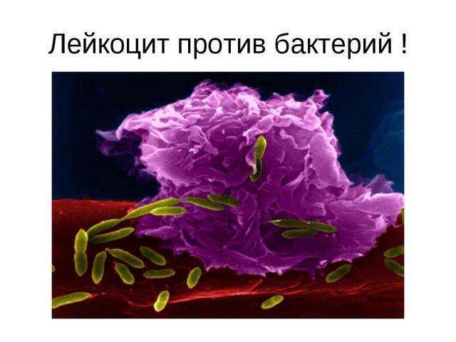 Лейкоцит против бактерий !
