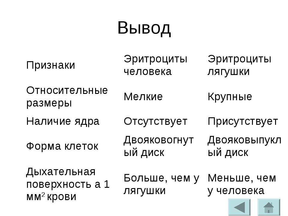 Вывод ПризнакиЭритроциты человекаЭритроциты лягушки Относительные размерыМ...