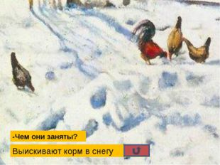 -Чем они заняты? Выискивают корм в снегу