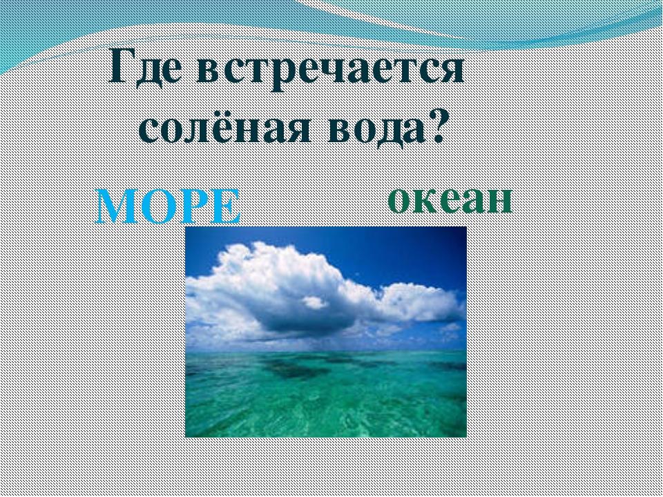 Где встречается солёная вода? океан МОРЕ