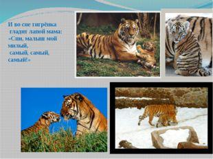 И во сне тигрёнка гладит лапой мама: «Спи, малыш мой милый, самый, самый, сам