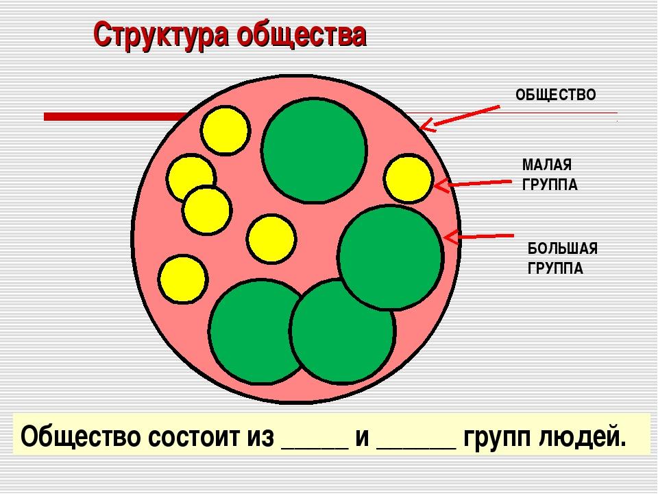 Структура общества Общество состоит из _____ и ______ групп людей.