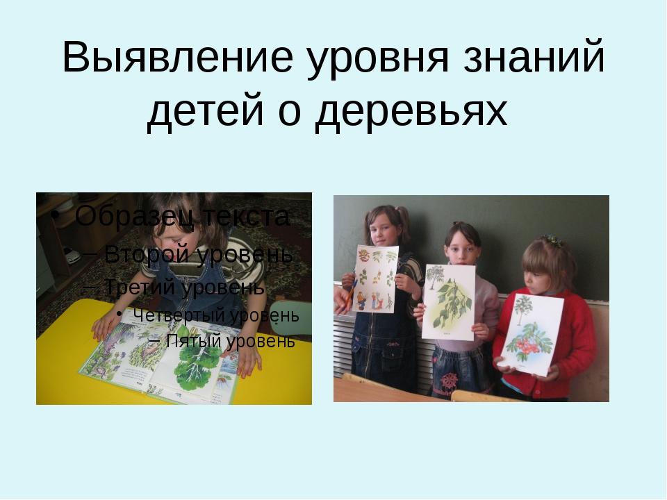Выявление уровня знаний детей о деревьях