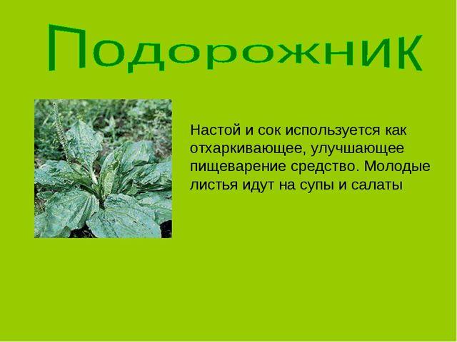 Настой и сок используется как отхаркивающее, улучшающее пищеварение средство....
