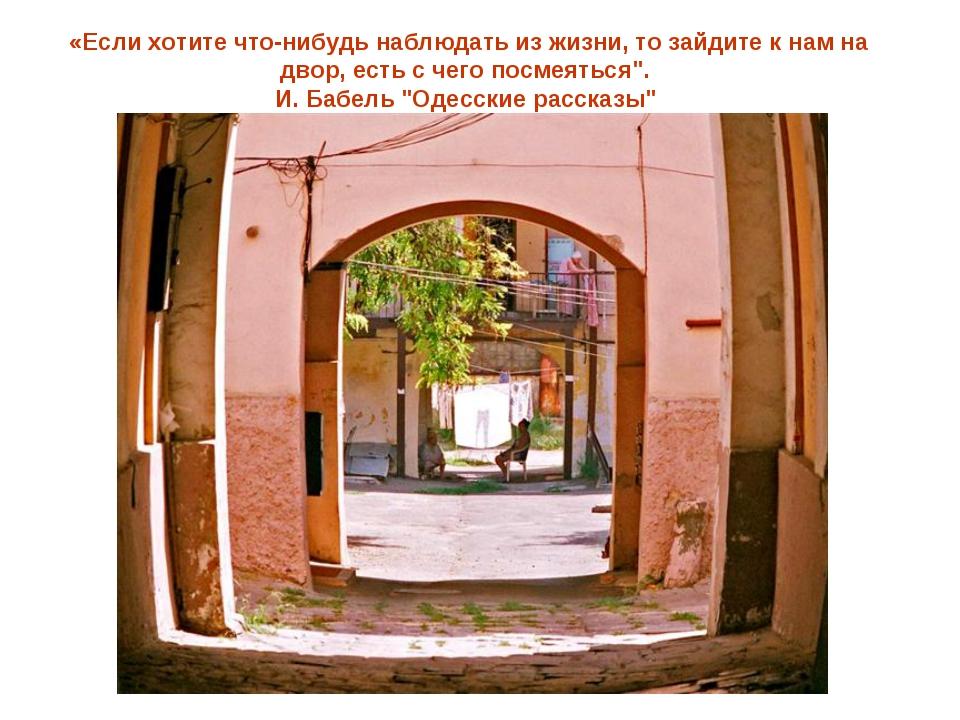 «Если хотите что-нибудь наблюдать из жизни, то зайдите к нам на двор, есть с...