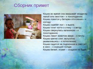 Кошка во время сна закрывает мордочку лапой или хвостом – к похолоданию; Кош