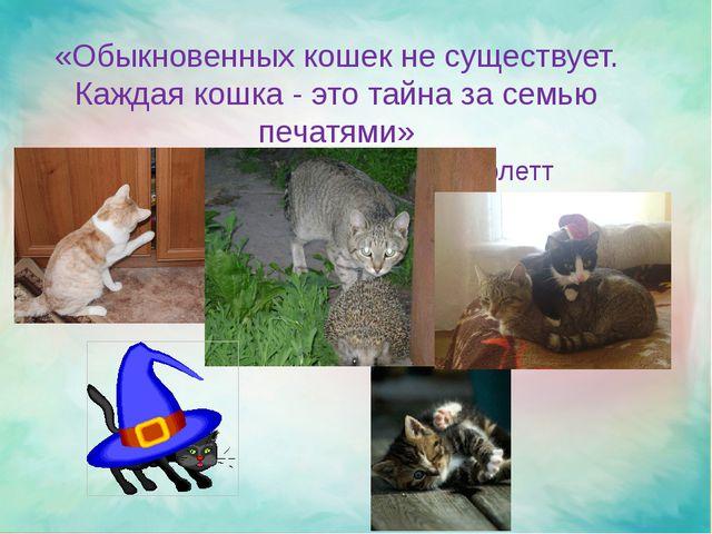 «Обыкновенных кошек не существует. Каждая кошка - это тайна за семью печатям...