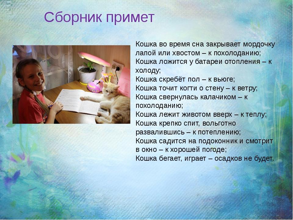 Кошка во время сна закрывает мордочку лапой или хвостом – к похолоданию; Кош...