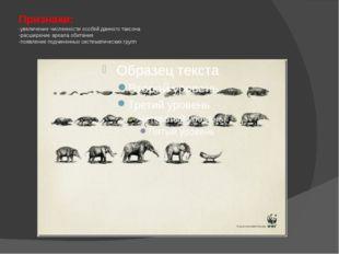 Признаки: -увеличение численности особей данного таксона -расширение ареала о