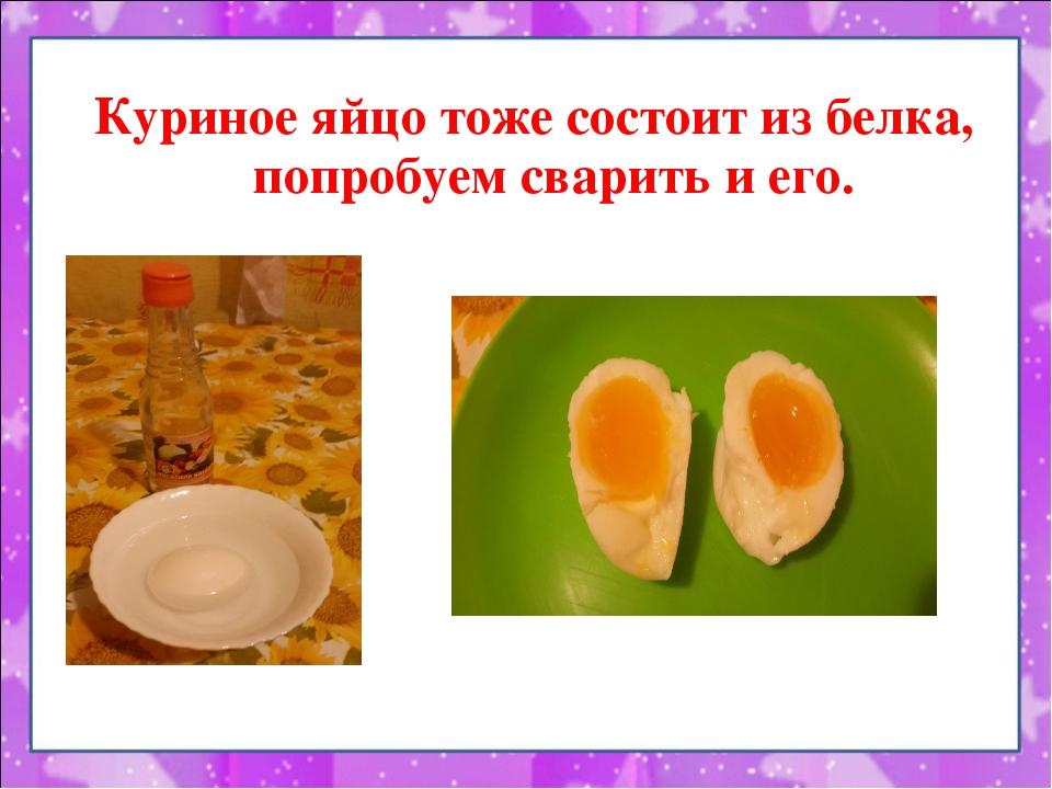 Куриное яйцо тоже состоит из белка, попробуем сварить и его.
