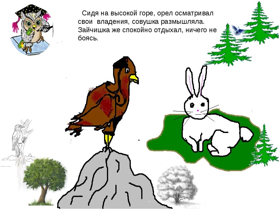 Сидя на высокой горе, орел осматривал свои владения, совушка размышляла. Зай...