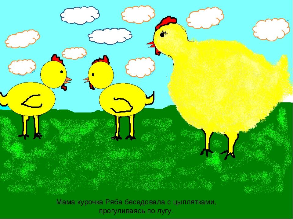 Мама курочка Ряба беседовала с цыплятками, прогуливаясь по лугу.