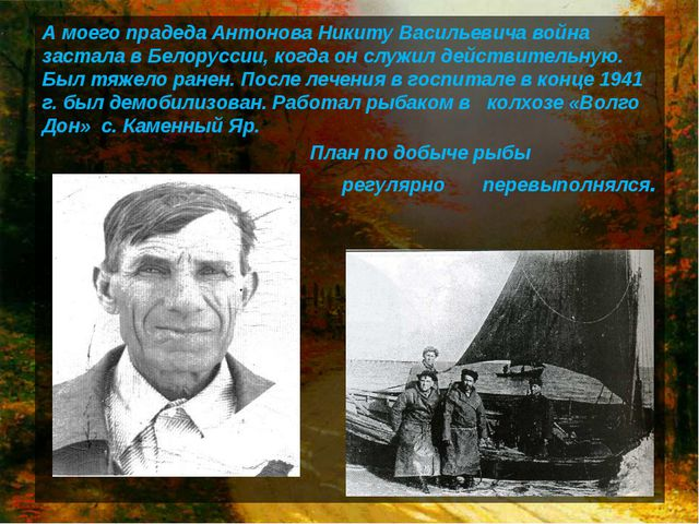 А моего прадеда Антонова Никиту Васильевича война застала в Белоруссии, когда...