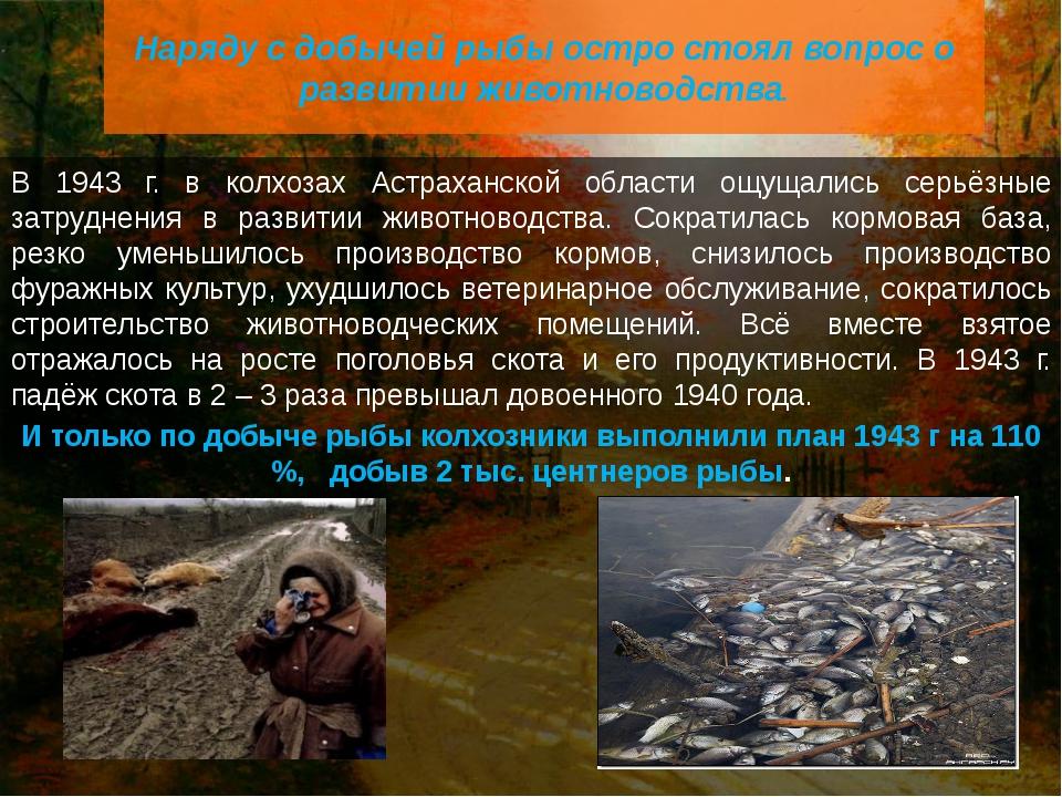 В 1943 г. в колхозах Астраханской области ощущались серьёзные затруднения в р...