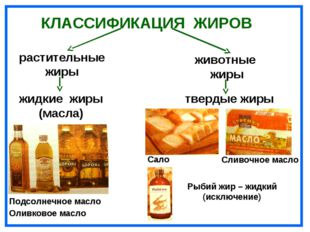 КЛАССИФИКАЦИЯ ЖИРОВ растительные жиры жидкие жиры (масла) Подсолнечное масло