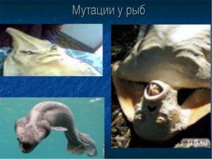 Мутации у рыб