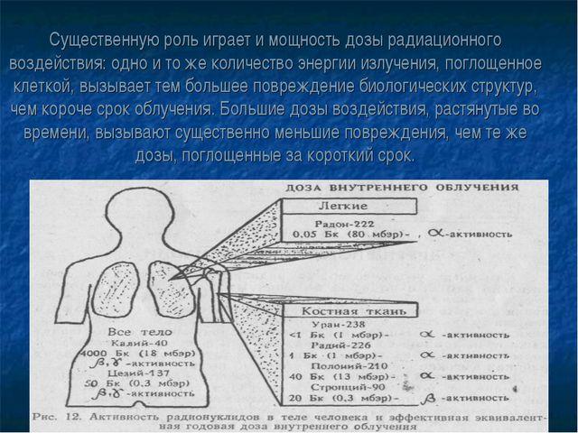 Существенную роль играет и мощность дозы радиационного воздействия: одно и то...