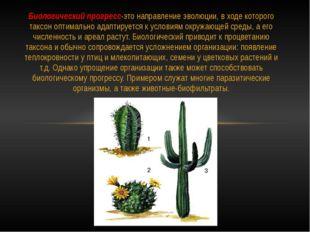 Биологический прогресс-это направление эволюции, в ходе которого таксон оптим