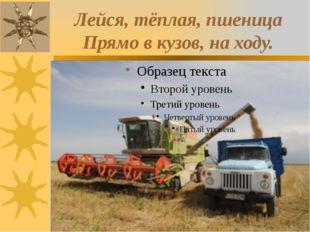 Лейся, тёплая, пшеница Прямо в кузов, на ходу.