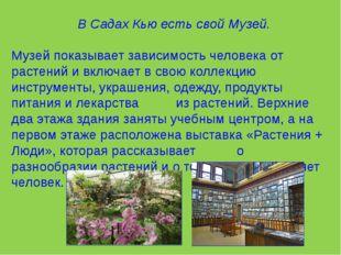 В Садах Кью есть свой Музей. Музей показывает зависимость человека от растен