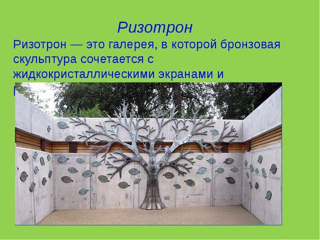 Ризотрон Ризотрон — это галерея, в которой бронзовая скульптура сочетается с...