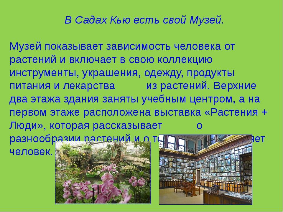 В Садах Кью есть свой Музей. Музей показывает зависимость человека от растен...