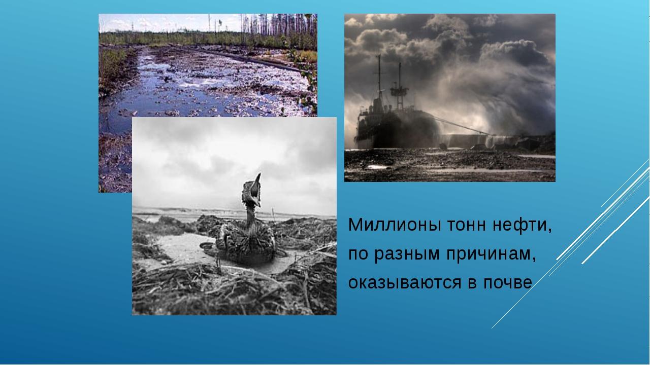 Миллионы тонн нефти, по разным причинам, оказываются в почве