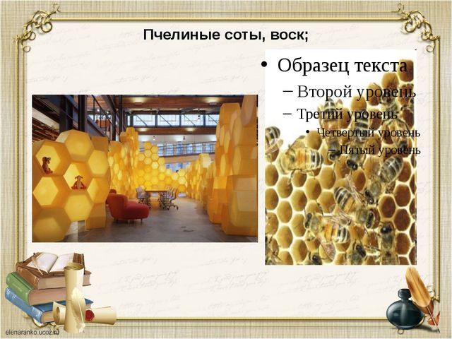 Пчелиные соты, воск;