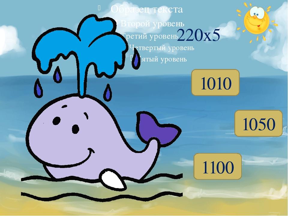 1010 1050 1100 220x5