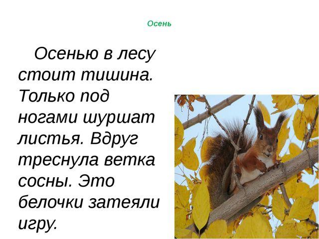 © InfoUrok.ru Осень Осенью в лесу стоит тишина. Только под ногами шуршат лис...