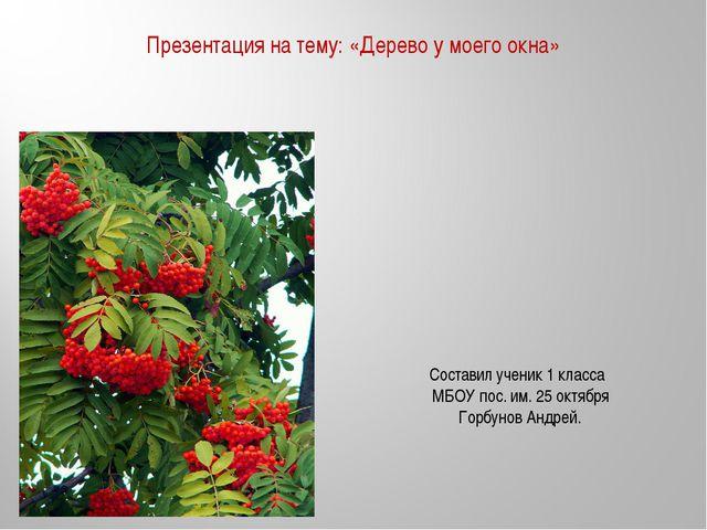 Презентация на тему: «Дерево у моего окна» Составил ученик 1 класса МБОУ пос....