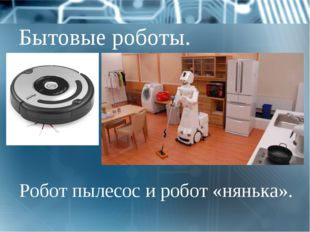Бытовые роботы. Робот пылесос и робот «нянька».