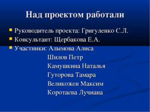 Над проектом работали Руководитель проекта: Григуленко С.Л. Консультант: Щерб