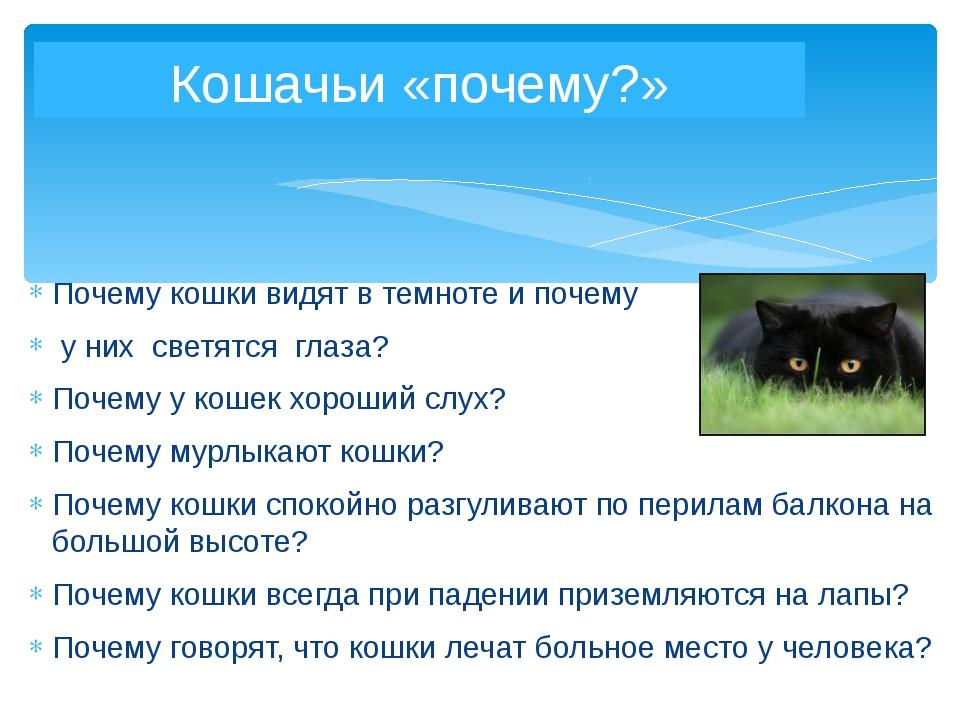 Почему кошки видят в темноте и почему у них светятся глаза? Почему у кошек хо...